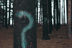 Painted question mark on a tree trunk